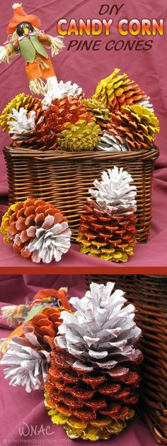 DIY Candy Corn Pine Cones a wonderful project for autumn decorating., DIY and Crafts, DIY Candy Corn Pine Cones a wonderful project for autumn decorating. Pine Cone Art, Pine Cones, Thanksgiving Crafts, Holiday Crafts, Thanksgiving Decorations, Fall Halloween, Halloween Crafts, Halloween Ideas, Diy Fest