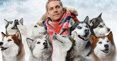 The best dog movies are based on a heroic dog's tales or some even star the actual heroic dog himself. Here's Outside's list of the top dog films—grab some popcorn, a bone, and get comfy. Paul Walker Movies, Rip Paul Walker, Bruce Greenwood, Dog Films, Action Movies, Telugu, Good Movies, Best Dogs, Puppies