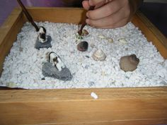 zen gardens at preschool