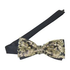 b0d38f1651c1 26 Best Flashy Bow Ties images in 2016 | Black tie, Band, Bands