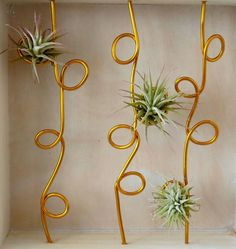 Wooden Air Plant Holder- Whimsical Modern Decor - Display No.1