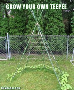 Amazing Ideas For Your Yard 20 Pics. This would be so cool to do for little boy, while growing veggies like beans or cukes at the same time