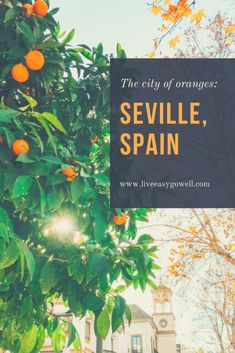 Seville, Spain- The City of Oranges