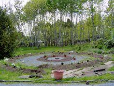 Moon Garden - the beginning 2010 by Judith Gerber