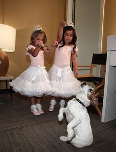 Inference:  What are these girls doing? Cause: What has caused the dogs to sit on his back legs?  Effect: What's going to happen next?