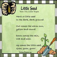 I'm a Little Seed Grow Spring Song Here's a little seed in the dark, dark ground. Out comes the warm sun, yellow and round. April Preschool, Preschool Garden, Preschool Music, Preschool Themes, Music Activities, Preschool Classroom, Spring Songs For Preschool, Kids Music, Preschool Printables