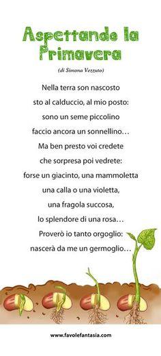 Learning Italian Through Vocabulary Italian Grammar, Italian Vocabulary, Italian Language, How To Speak Italian, Basic Italian, Elemento Terra, Everyday Italian, Eco Kids, Green School