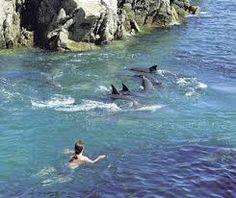 South Africa - Plettenberg Bay