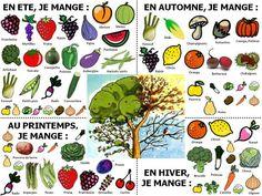 Aperçu d'une fiche pratique pour la saison de fruits et légumes de saison.