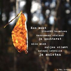 #runo #runokuva #runous #runoilija #valokuva #valokuvaus #suomeksi Motivational Quotes, Motivating Quotes, Quotes Motivation, Motivation Quotes, Motivational Words