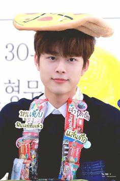 Yoo Seonho, Welcome To My Page, Produce 101 Season 2, Baby Chicks, Seasons, Korean, Artists, Bears, Korean Language