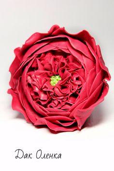 Flower of chocolate
