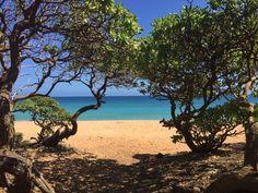 Donkey Beach, Kauai HI. Hidden Gem!