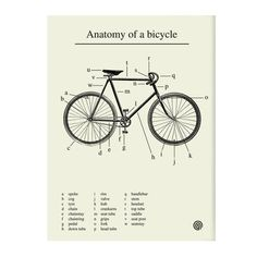 Anatomy Print, 20€, now featured on Fab.