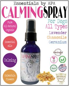 Organic Essential Oil scented Calming Spray with Sweet Almond oil infused with Chamomile flowers for Dogs ~ Lavender, Chamomile & Geranium Essential Oils Dogs, Essential Oil Spray, Cedarwood Essential Oil, Geranium Essential Oil, Essential Oil Scents, Organic Essential Oils, Dog Hot Spots, Oils For Dogs, Deodorant