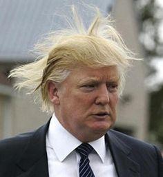Rick Scott is worried about #fangate? I hate fans. Or breezes. Especially Breezes. #uniteblue