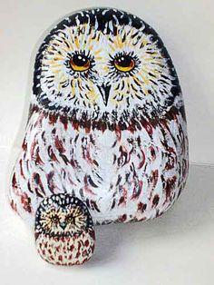 Owl & owlet painted on rocks