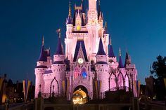 65 top things to do at Disney--some are a bit outdated (no more toon town) but still lots of great info!
