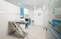 Hospital Veterinario Constitución,© Adolfo López