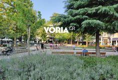 Θεσσαλονίκη: Πεζοδρομήσεις στη Χαριλάου - Το σχέδιο του δήμου (φωτο) Dolores Park, Travel, Viajes, Trips, Tourism, Traveling