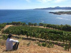 Finca Garbet: an amphitheater of the Mediterranean Mountains, Nature, Travel, Growing Up, Earth, Viajes, Naturaleza, Destinations, Traveling