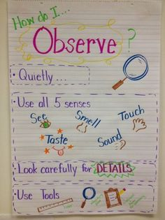 science anchor charts}