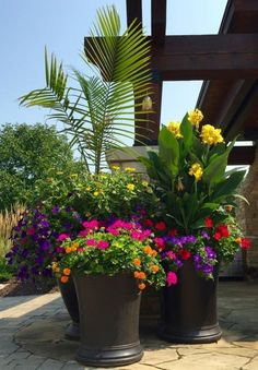 One Way To Beautify The Entrance Of Your Home Is Place Some Flower Pots Close