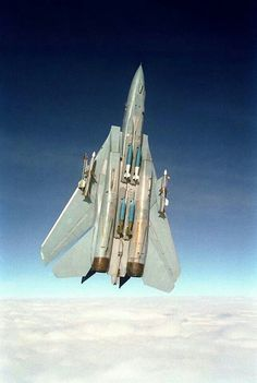 F-14 Tomcat. http://www.pinterest.com/jr88rules/war-birds/ #Warbirds