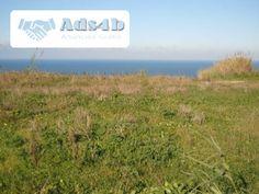 RV1551 Terreno de 2.594 m2 com projecto aprovado - Vista mar - Localizado entre as praias da Foz do Arelho e S. Martinho do Porto - Frente para mar - Projecto aprovado para moradia unifamili...