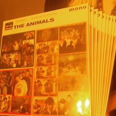 The Animals in lovely punchy mono #rsduk
