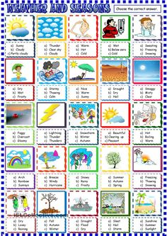 Weather and seasons multiple choice activity