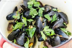 Green Curry Coconut Mussels Recipe from @fifteenspatulas