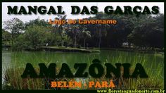 Amazônia - Belém - Mangal das Garças - Lago do Cavername - Celcoimbra - FAN