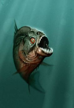 piranha fish | Piranha Photo - Piranha 3-D Movie Piranha Photo