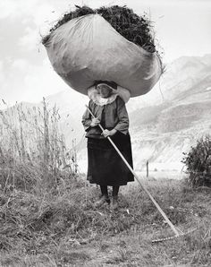 Haying in Cogne, 1959  Pepi Merisio
