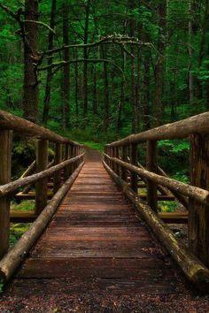 Psychic Healer, Distance Healer, Psychic Healing call/text  +27786966898 visit: http://www.drraheemspells.com  https://plus.google.com/113935548839385207758  https://za.pinterest.com/drraheem/  https://twitter.com/drraheem22  https://www.facebook.com/profile.php?id=100011540707007  https://www.facebook.com/profile.php?id=100011540707007   https://youtu.be/7rSjFPLZrEo  https://youtu.be/YuIWmxhG9yg  https://youtu.be/WJTZS20_78E
