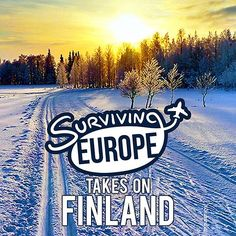 An 8 day journey in #Finland this winter! The Northern Lights, #Santa & Arctic Zoos. #survivingeurope