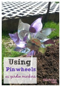 Need a cute and efficient way to mark your garden, as well as keep birds out?  Try making markers with pinwheels~The HomesteadingHippy #homesteadhippy #fromthefarm #garden