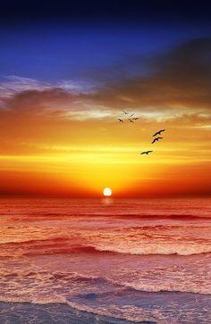 Sunset Beach - Melbourne, Victoria, Australia