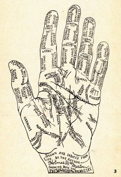 I've always loved hands, and I have a small collection of hand shaped items. Today I'm sharing hand ephemera, including palmistry diagrams a...
