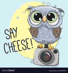 Cute owl with a camera on a blue background vector