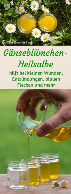 Aus einfachen Zutaten ist die heilende Gänseblümchensalbe ganz schnell hergest… From simple ingredients, the healing daisy ointment is made quickly and saves you from buying expensive wound and healing ointments. Home Remedies, Natural Remedies, Homemade Cosmetics, Medicinal Herbs, Natural Cosmetics, Castor Oil, Diy Beauty, Natural Health, The Balm