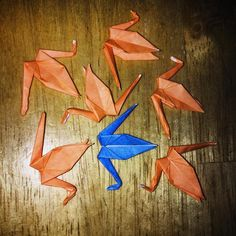 InstaOrbit 2016. Day 85 (25Mar2016) 7 Cranes. How was your day? Follow the flock! #InstagramOrbit #2016 #followtheflock #origami #1000 #100 #just #keepmoving #keeppounding #riseandgrind #keeppushing #keepmovingforward #goodday
