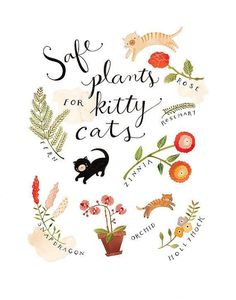 Safe Plants for Kitty Cats art print by Rebekka Seale Cat Safe Plants, Cat Plants, Garden Plants, Indoor Plants, Indoor Garden, Neko, Crazy Cat Lady, Crazy Cats, Cat Garden