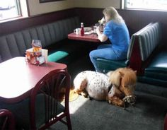 eating breakfast with my pony; its whatever.