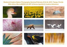 Arthur is speaking at the Texas Photo Conference in Arlington TX, March 16