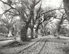 Bonaventure Cemetery. Savannah, Georgia. Circa 1901.