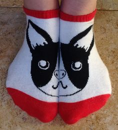 Boston Terrier love from my head to my toes
