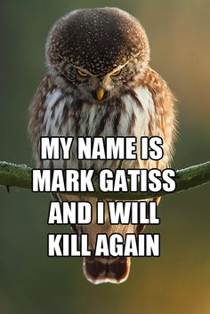 I don't think I've ever seen Mycroft as an animal. Accurate.