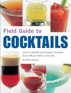 Field Guide to Cocktails: How to Identify and Prepare Virtually Every Mixed Drink at the Bar by Rob Chirico http://www.amazon.com/dp/1594740631/ref=cm_sw_r_pi_dp_rX5qwb0YHDJ73